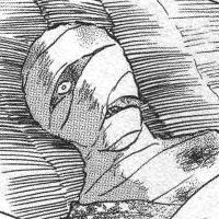 鬼蜘蛛 - 犬夜叉@ウィキ - atwiki(アットウィキ)